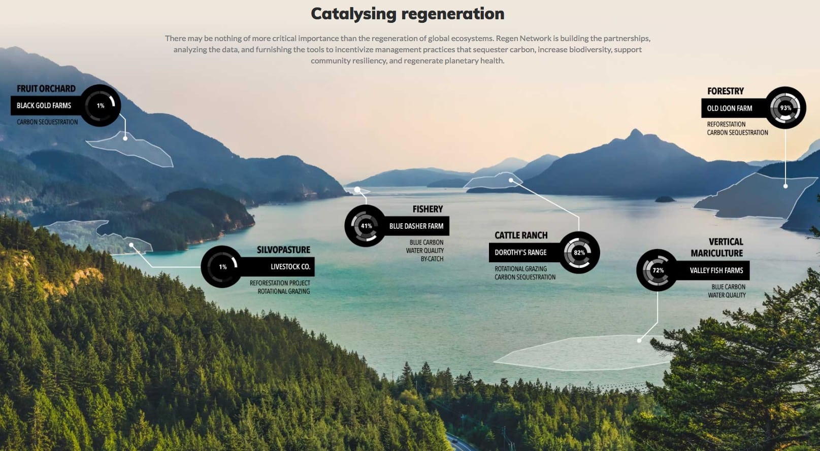 catalysing-regeneration