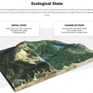 ecological-state