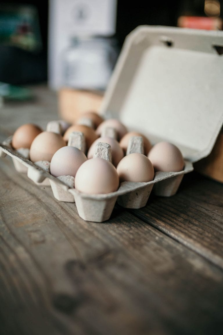 primalpastures-eggs
