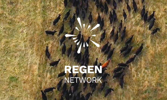 regen-launch-loablog